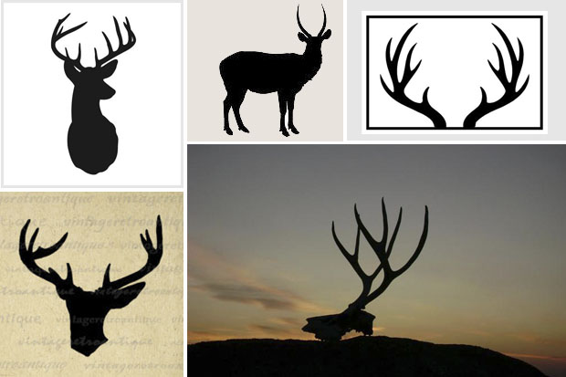 antlers_inspiration