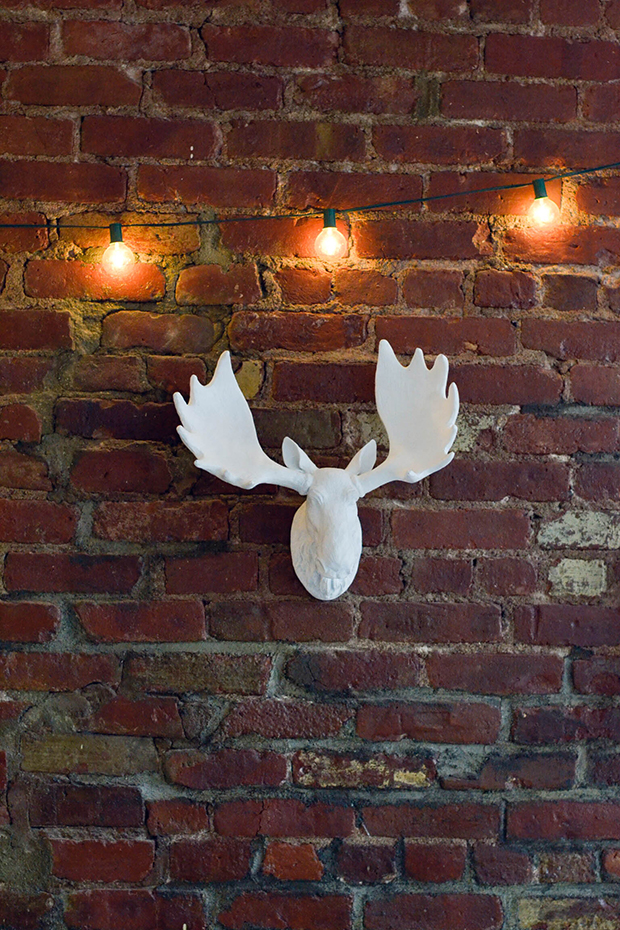 moose_lights