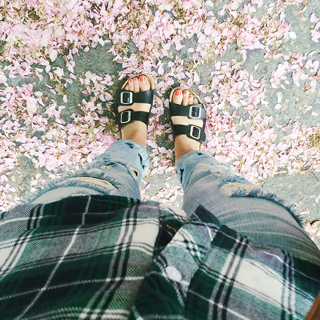 Blogging 101: How to Edit Photos for Instagram