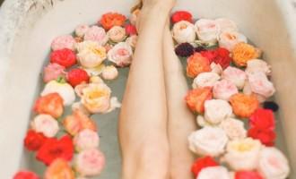 garden_rose_jamie_tinge_ciara_richardson_film_photography_1-619x845