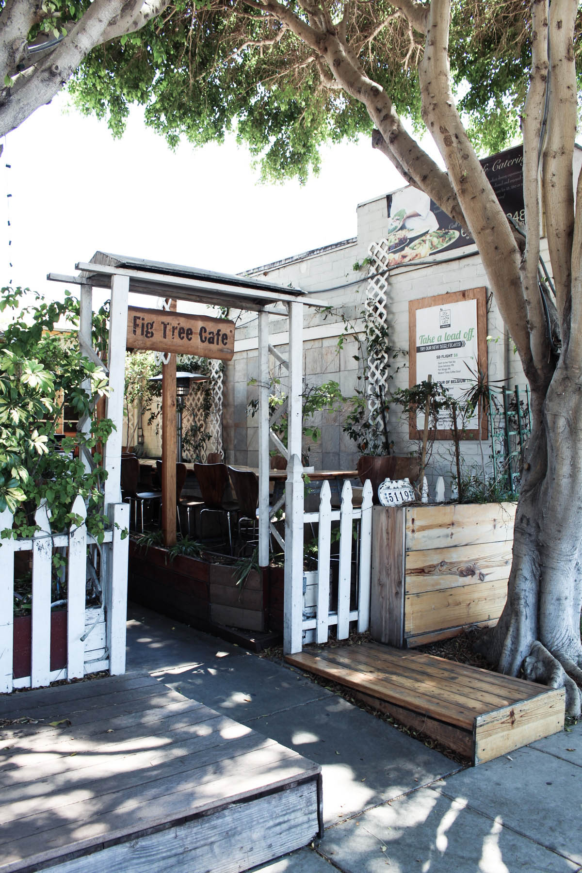 best San Diego brunch Fig Tree Cafe in Pacific Beach