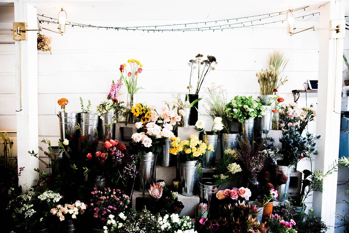 san francisco flower shops ampersand