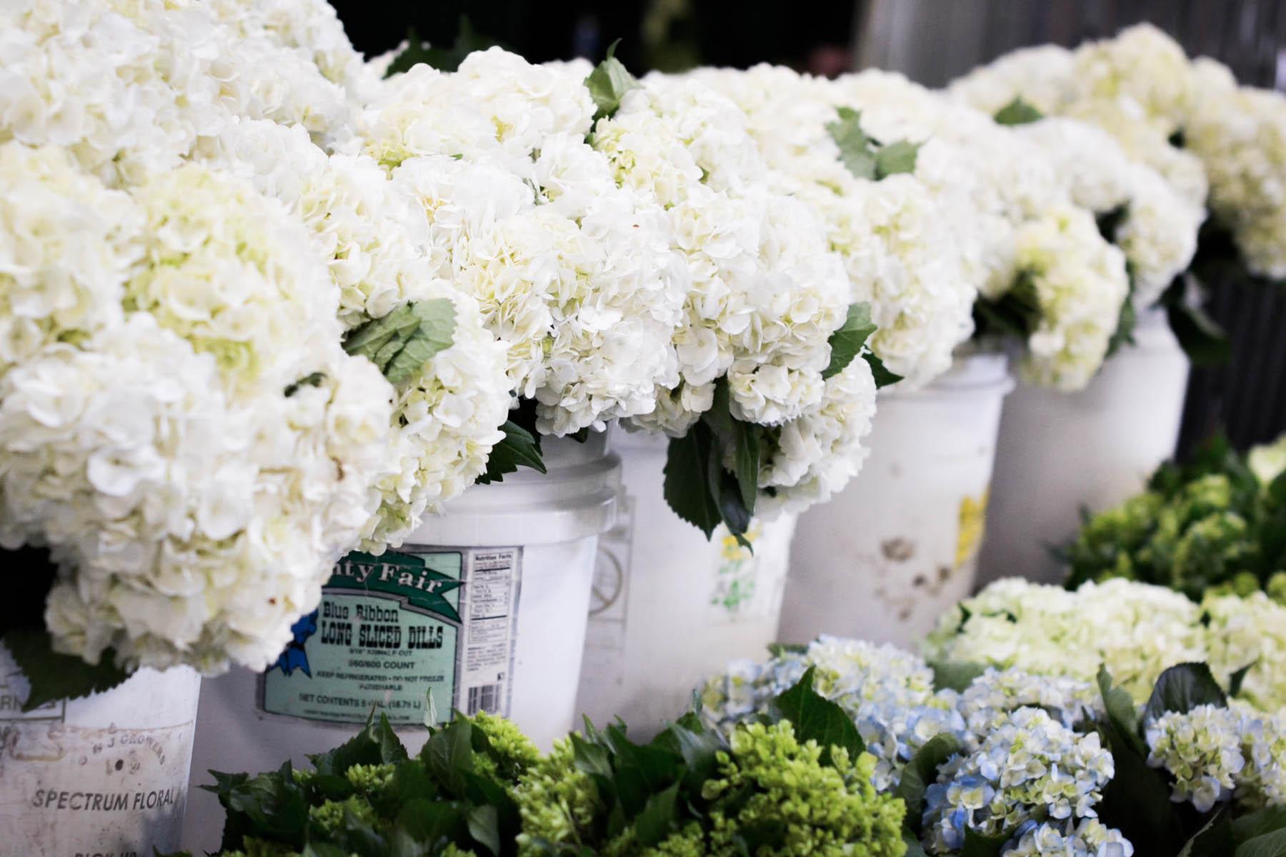 san francisco flower shops