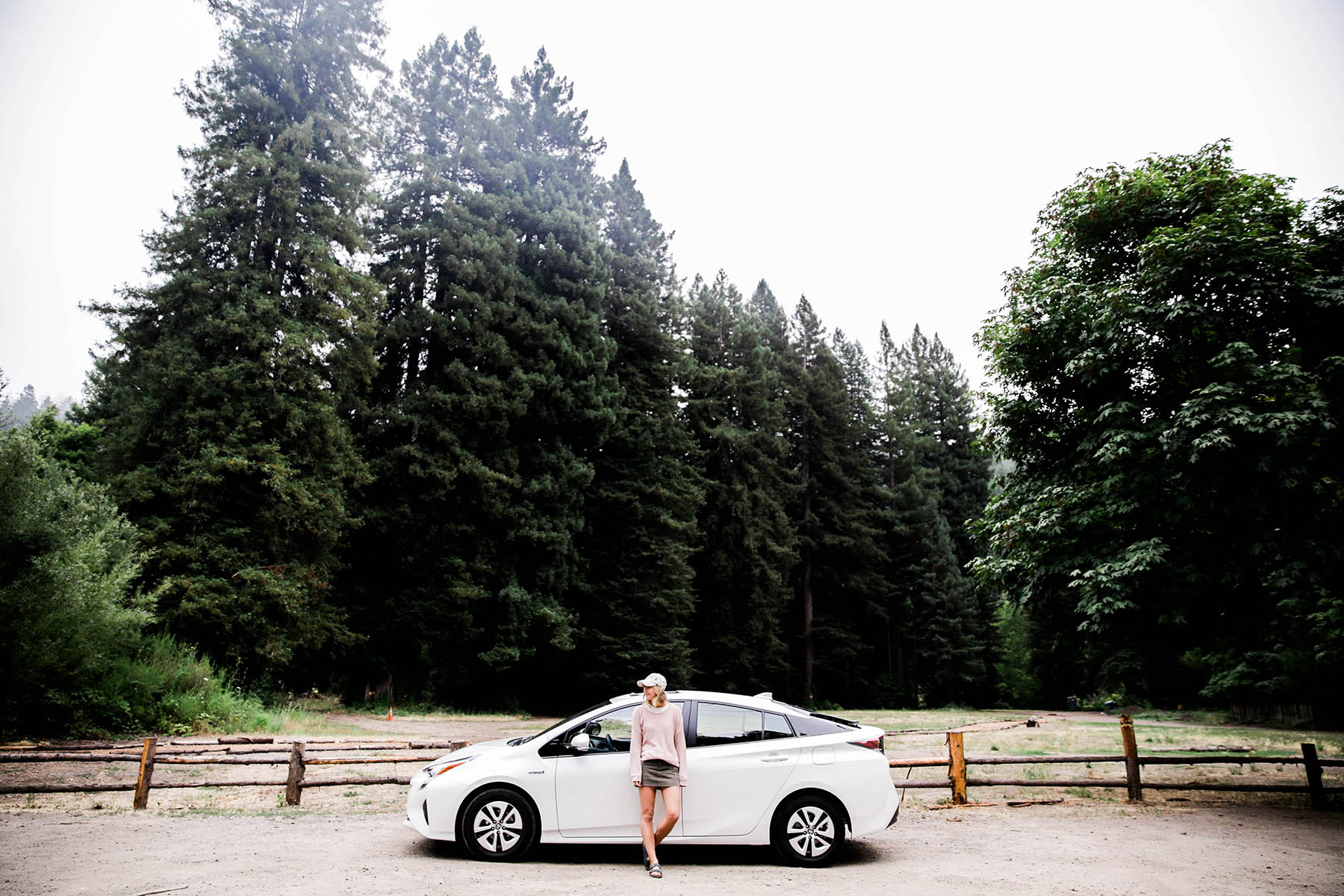 Prius California roadtrip