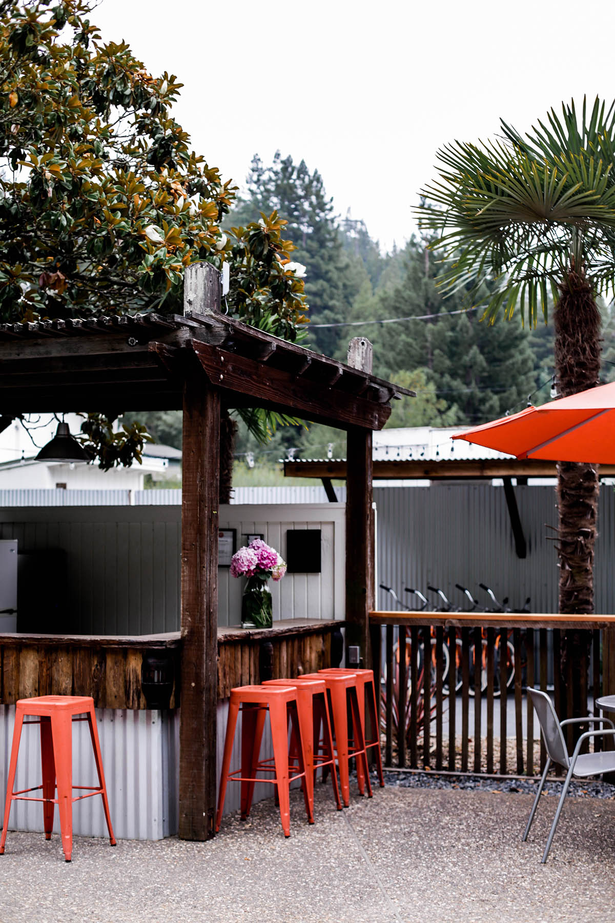 pool bar at boon hotel + spa guerneville