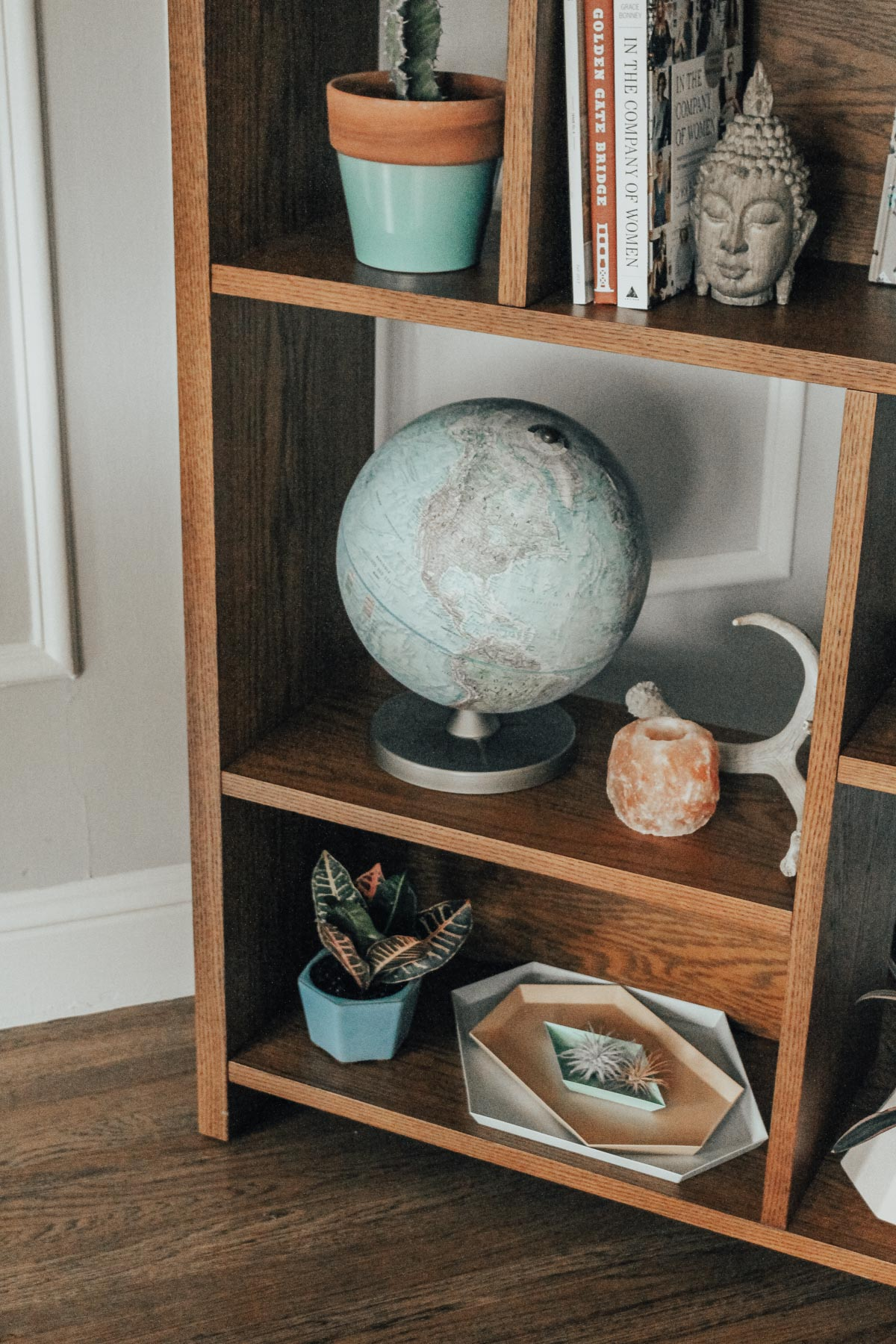 where to put plants in small apartment